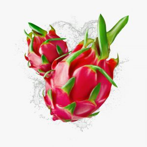 FlaveWater dragon fruit illustration