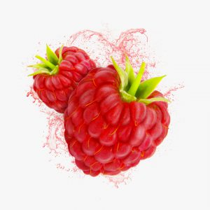 FlaveWater raspberry illustration