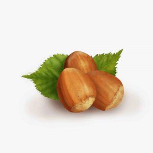 liqueur packaging illustration Frangelico hazelnuts