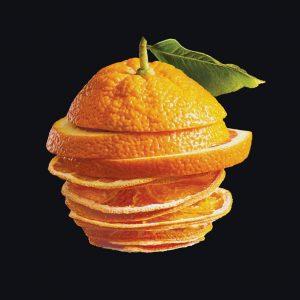 Nudus Orange Branding design